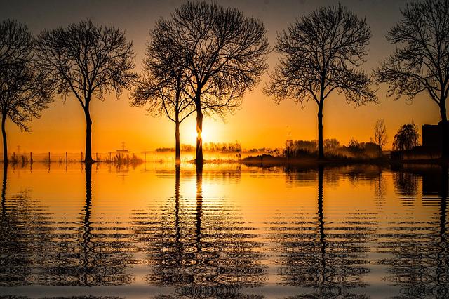 Sunset Vacations Sun Nature Tree  - 8926 / Pixabay
